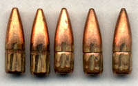 55 Gr. 223 FMJ Rounds recovered from the DPRS intact